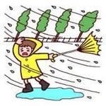 台風�W.jpg