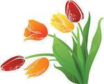 春の花�W.jpg