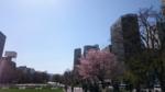春の街.png