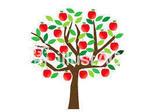 林檎の木.jpg