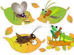 秋の虫.jpg